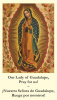 Our Lady of Guadalupe *BILINGUAL* Memorare Prayer Card