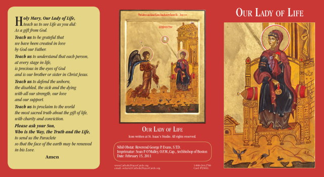 *BILINGUAL* Our Lady of Life Tri-fold Prayer Card (English/Spanish)