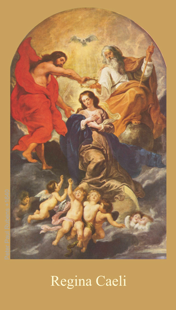 *BILINGUAL* Regina Caeli Prayer Card (Latin/English)