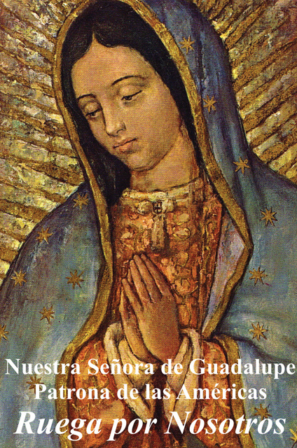 Religious Liberty Prayer Card - Our Lady of Guadalupe - Spanish