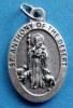 **EXCLUSIVE** St. Anthony of the Desert Medal